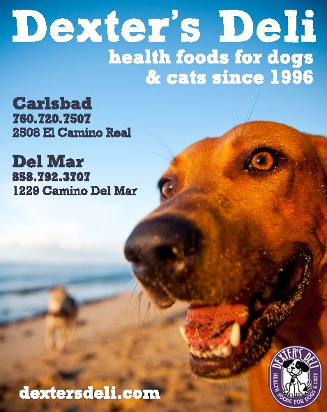 Dexters_new_beachdogfacePetLoversAdFlat_1