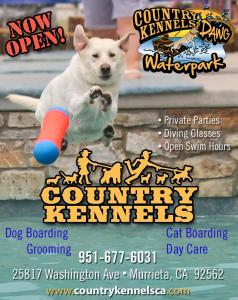 Country Kennels4