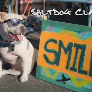 SaltDog Classic - Family Festival @ Seaside State Beach | Solana Beach | California | United States